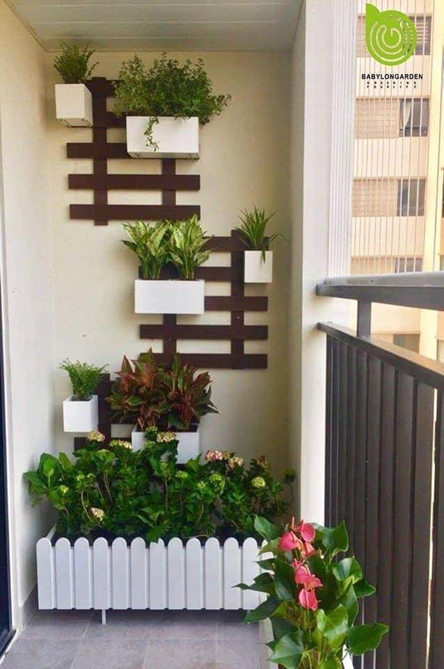 Top 4 Wall Hanging Plant Pot Designs